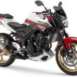 Modifikasi Yamaha MT-25