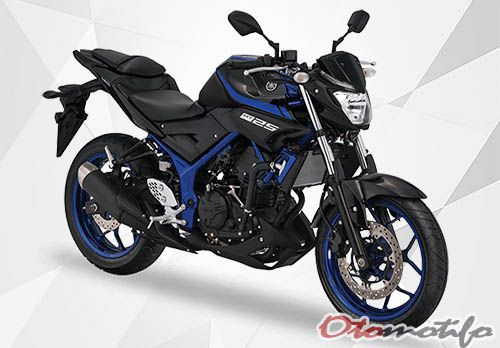 Review Yamaha MT 25