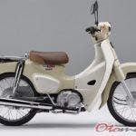 Foto Honda Super Cub