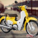 Gambar Motor Honda Super Cub 2018