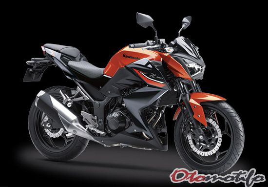 Review Kawasaki Z250