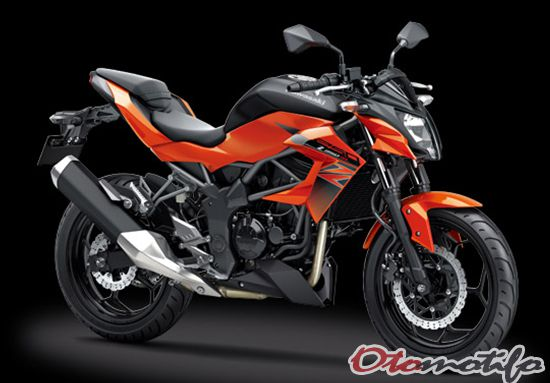 Spesifikasi dan Harga Kawasaki Z250SL