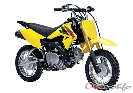 Gambar Suzuki DR-Z70