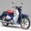 Harga Honda Super Cub C125 2021 : Review & Spesifikasi