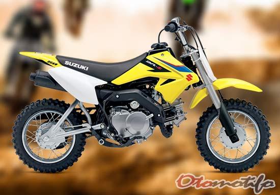 Suzuki DR-Z70