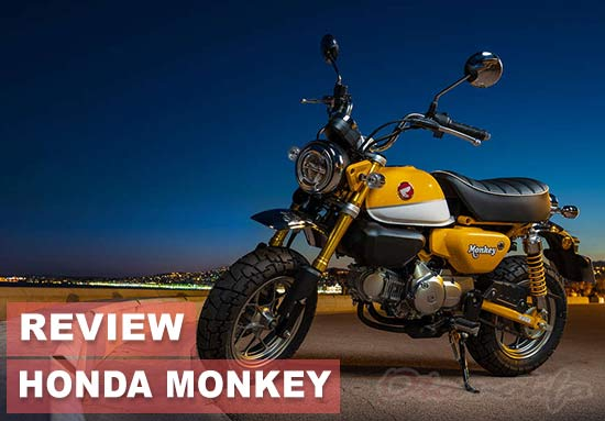 Review Honda Monkey