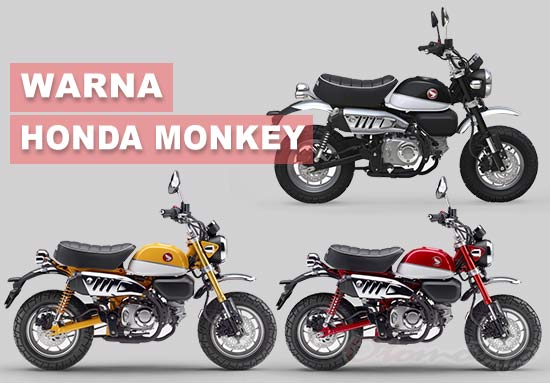 Warna Honda Monkey Indonesia