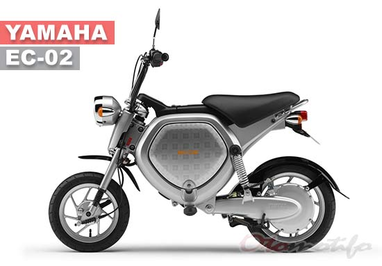 Yamaha EC-O2