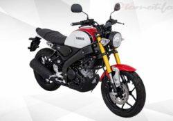 Warna Motor XSR 155